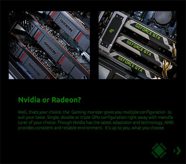 Nvidia or AMD